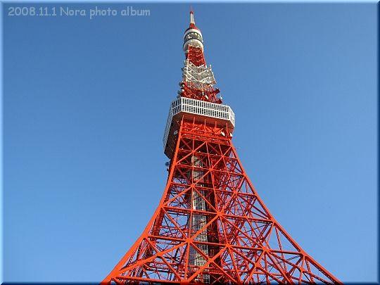 2008.11.01東京タワー.JPG
