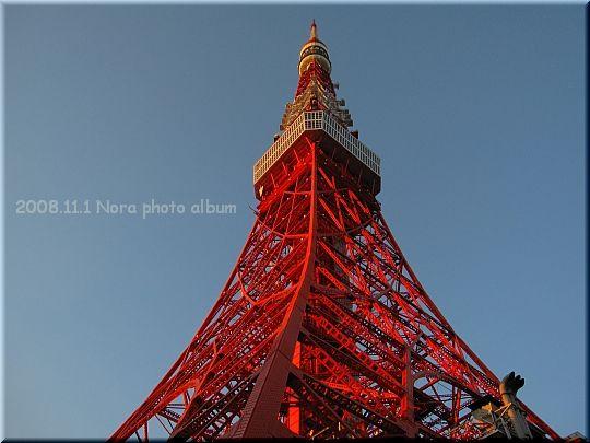 2008.11.01東京タワー (1).JPG