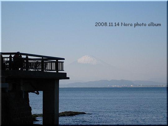 2008.11.14江ノ島 (2).JPG