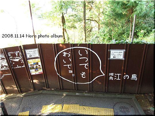 2008.11.14江ノ島 (24).JPG