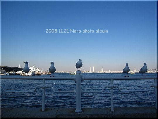 2008.11.21みなとみらい (13).JPG
