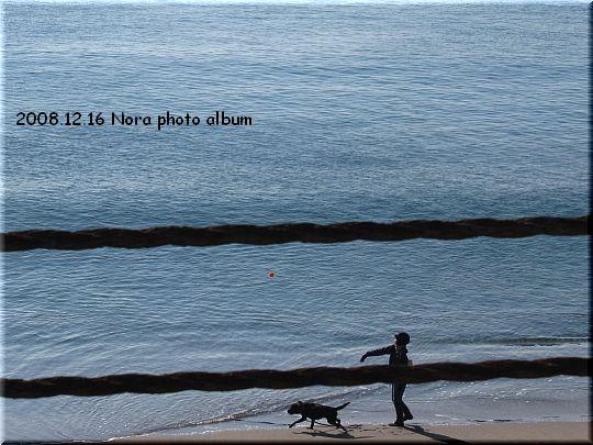 2008.12.16江ノ島辺り.JPG