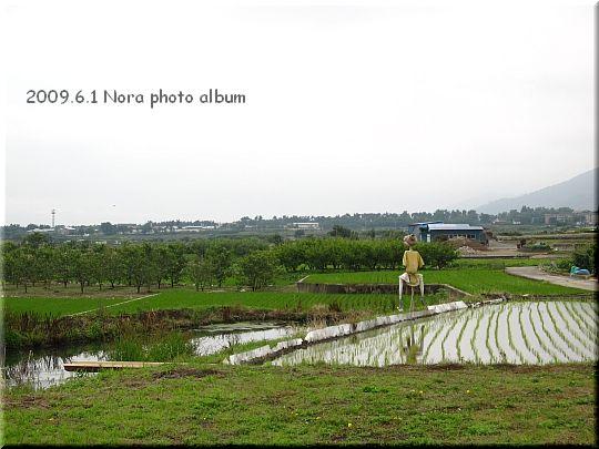 2009.06.01山梨県 (1).JPG