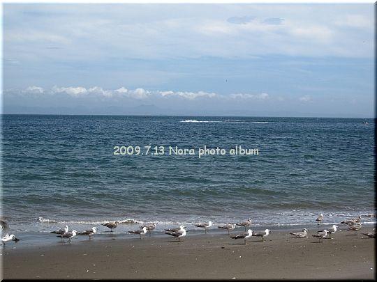 2009.07.13三浦海岸 (6).JPG
