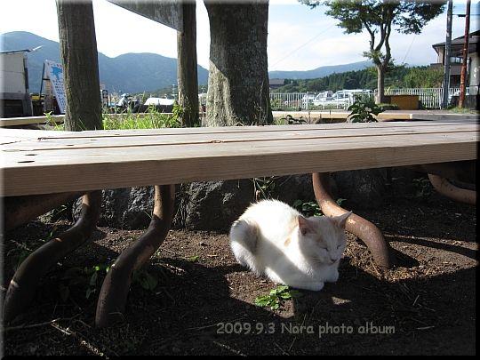 2009.09.03芦ノ湖 (2).JPG