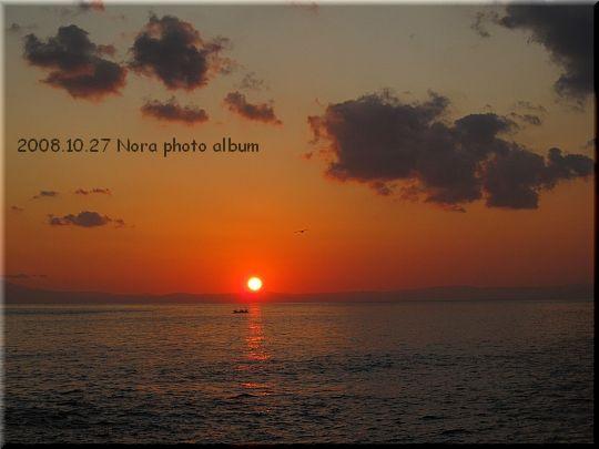 2008.10.27城ヶ島 (5).JPG