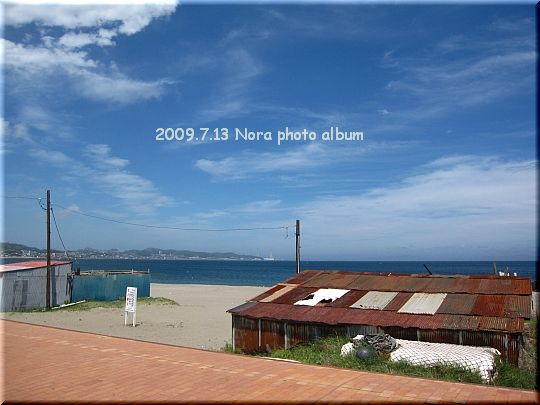 2009.07.13三浦海岸 (7).JPG